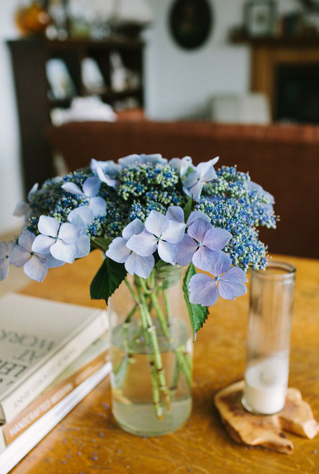 Hydrangeas-on-a-table