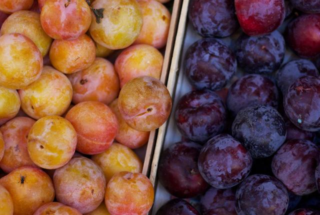 Italian-market-plums