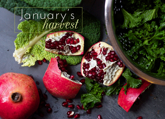 Eating-seasonally-January's-harvest-3