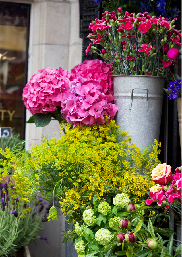 Liberty-flowers