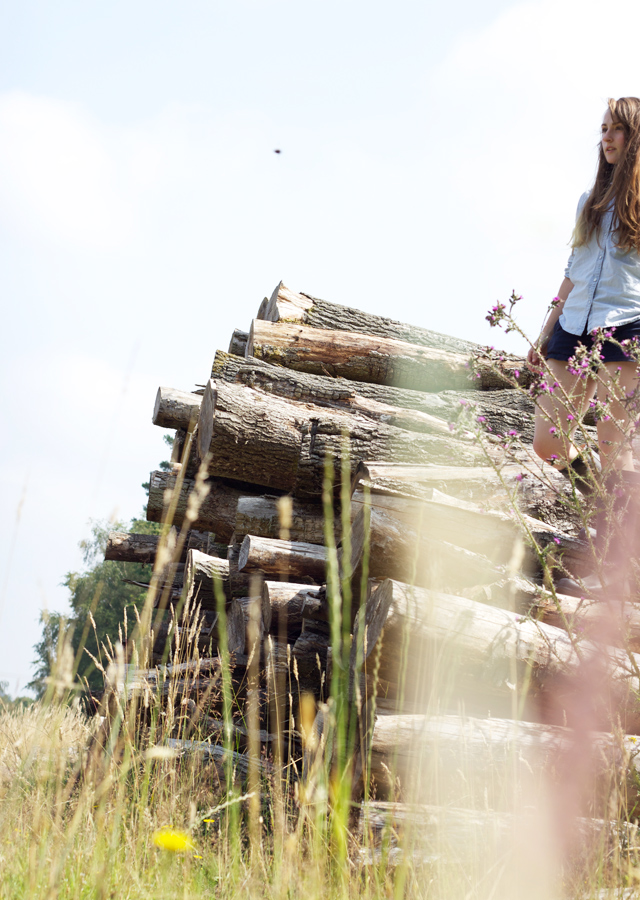 Cider-with-Rosie-climbing-stacked-logs