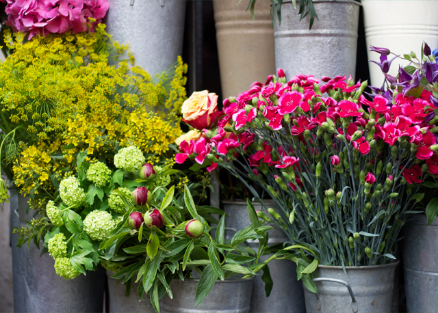 Liberty's-flower-stall