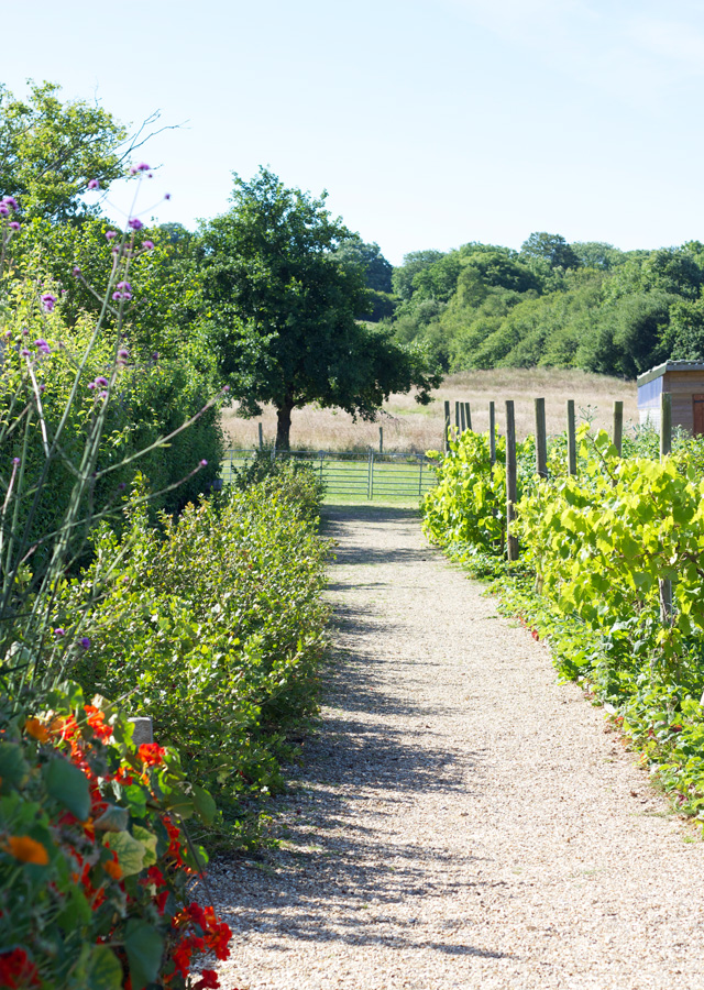 River-Cottage-gardens