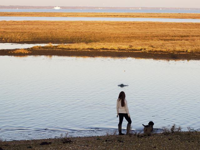 Cider-with-Rosie-beach-dog-walk