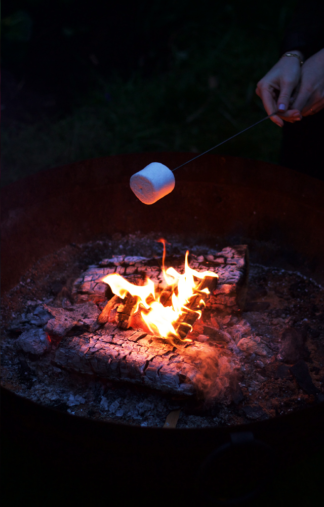 Toasting-marshmallows-by-the-fire