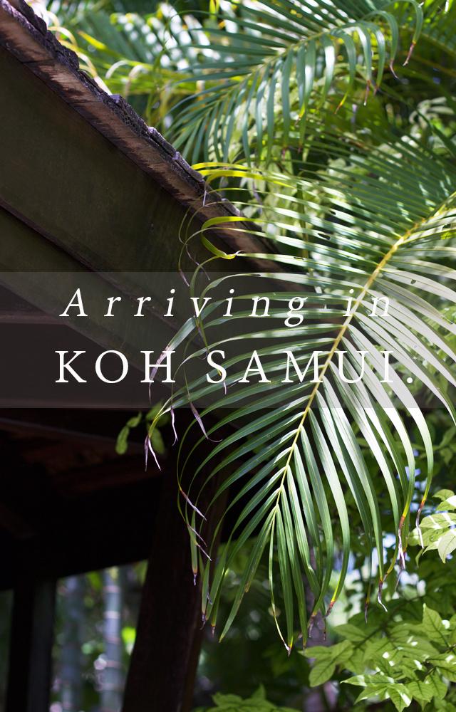 Cider-with-Rosie-honeymoon-Koh-Samui