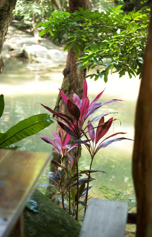 Cider-with-Rosie-travel-Thailand-4