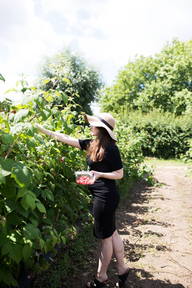 Cider-with-Rosie-32-weeks-pregnant-berry-picking-5